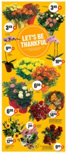 FreshCo Flyer October 7 to October 13, 2021 - Page 14 of 14 - Flowers in bloom