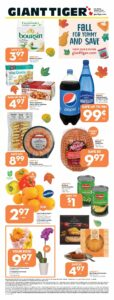 Giant Tiger Flyer October 6 to October 12, 2021 - Page 1 of 22 - Fall For Yummy And Save