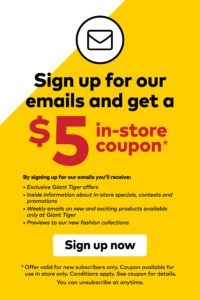 Giant Tiger Flyer October 6 to October 12, 2021 - Page 22 of 22 - $5 in-store coupon