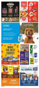 Loblaws Flyer October 7 to October 13, 2021 - Page 15 of 17 - Pet